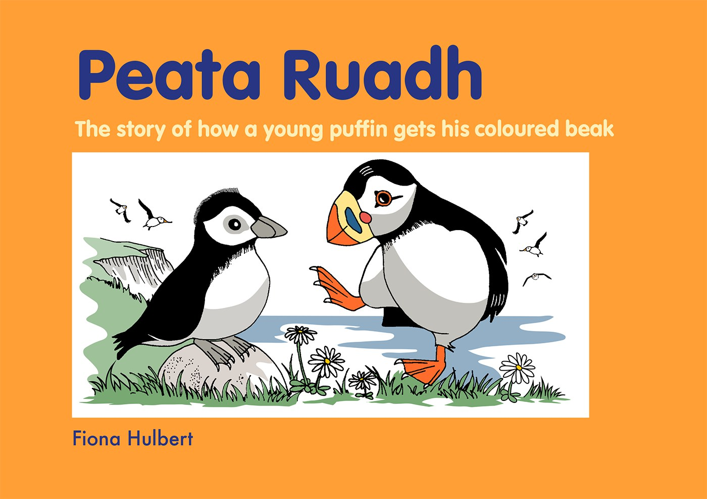 Peata Ruadh is fed up waiting for his very first colourful beak. Peata decides to explore some very imaginative solutions to his impatience.  But he soon realises that nature will not be rushed. Creative ideas lead the reader to a natural process.