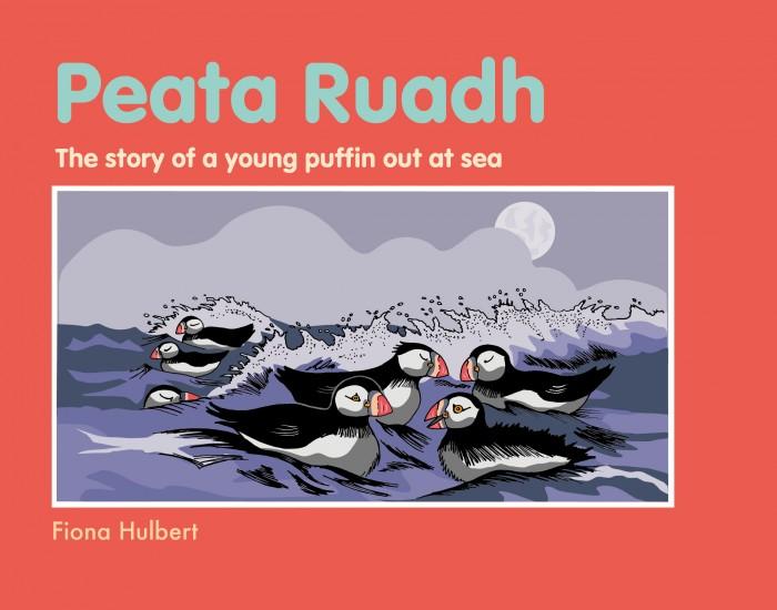 Buy Peata Ruadh Story books